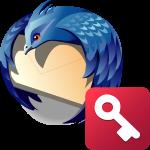 Как посмотреть пароль в Mozilla Thunderbird